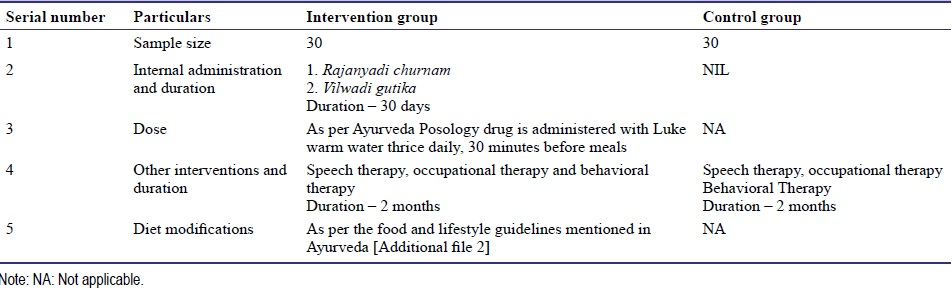 Table 2: Description of the intervention plan
